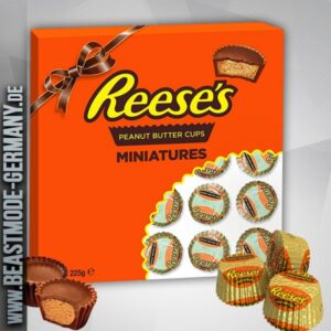 beastmode-cheatday-reeses-miniatures-gift-tray
