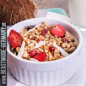 beastmode-best-body-fit-4-day-protein-muesli-rote-fruechte-detail